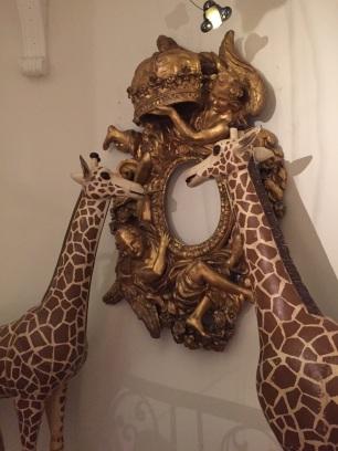 Gallery safari